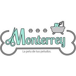logo-Monterrey